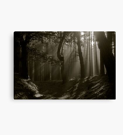 Phenomenal  Black and White  ##  Contrasting ## Perceptions . by Dr.Andrzej Goszcz . 2376 views . Thx! Featured in 5D Mark II . Canvas Print