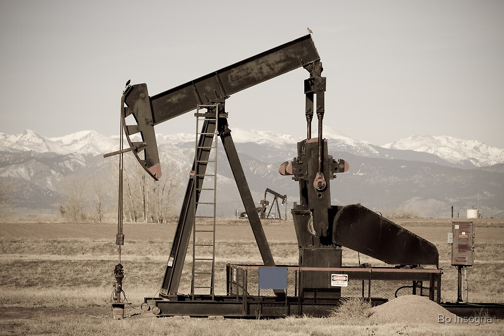 Oil Well Seesaw for the Birds by Bo Insogna