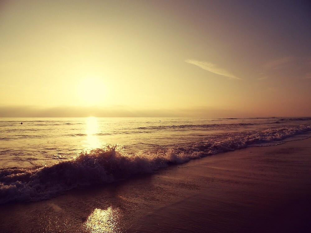 SEA #162 by Laura E  Shafer