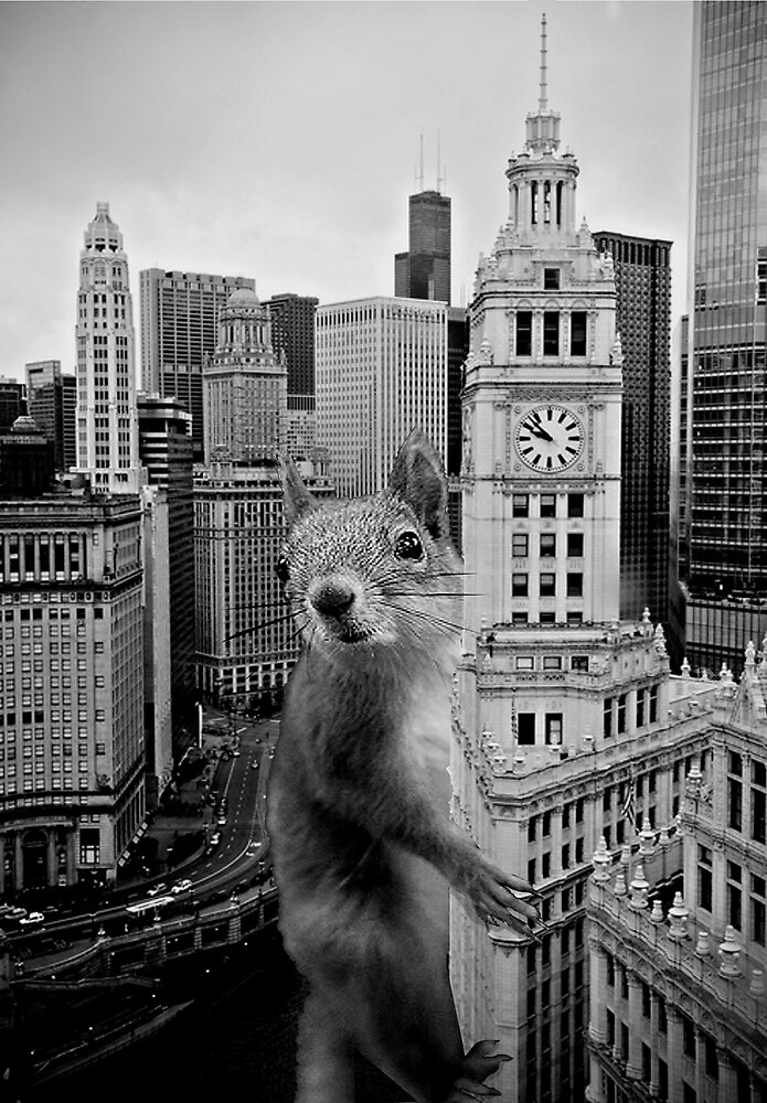 king squirrel by Loui  Jover