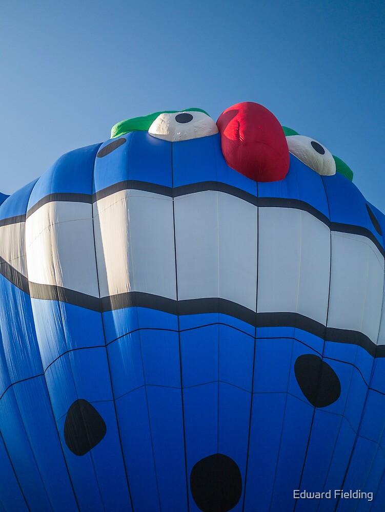 PIKO the Hot Air Balloon by Edward Fielding