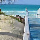 Playa Pilar by Roxanne Persson