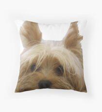 Cute Yorkshire terrier Throw Pillow