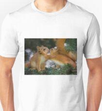 Baby Squirrel Kiss Unisex T-Shirt