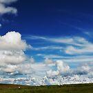 Windfarm by Beverly Cash