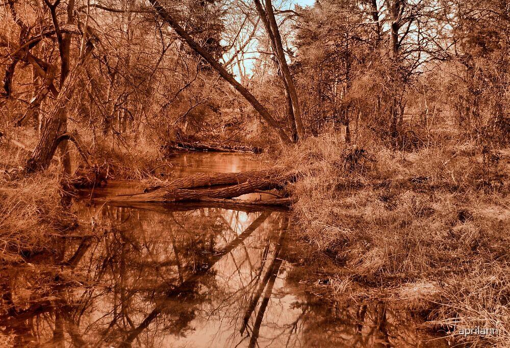 Creek Reflections by aprilann