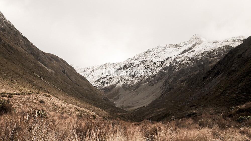 Arthurs Pass by williamfpitt