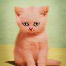 kitten tears by Vin  Zzep