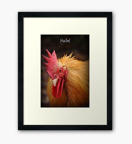 Hello ~ Framed Print