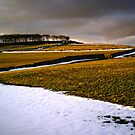 Sunlight, snow and fields by Greg  Walker