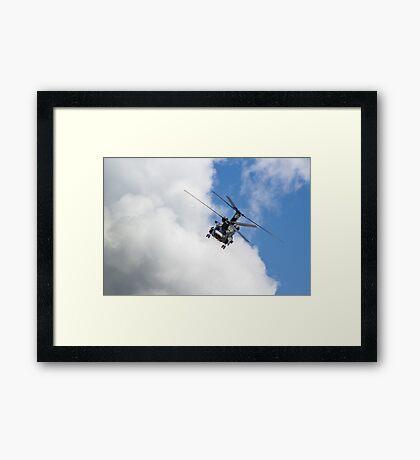 Chinook Framed Print