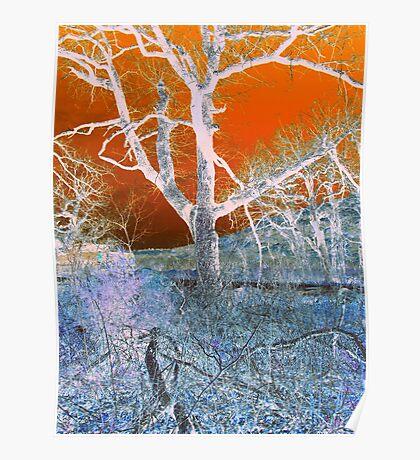 White Tree Poster