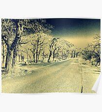 Vintage Road Poster