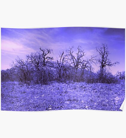 Purple Landscape Poster