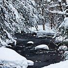 Winter Creek by mlaprade