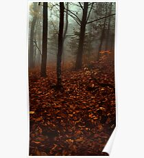 Nature Trees Poster