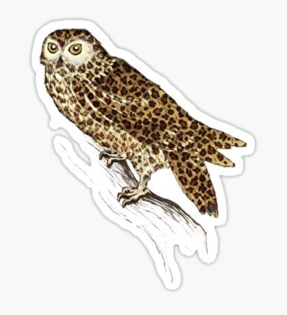 The Jaguar Owl Sticker