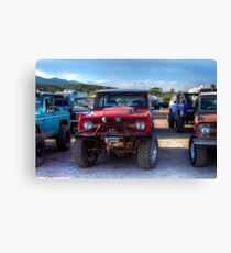 Robert D Bassett's Bronco Canvas Print