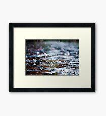 meet the rain Framed Print