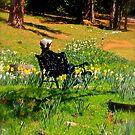 Spring Contemplation by Barbara  Brown