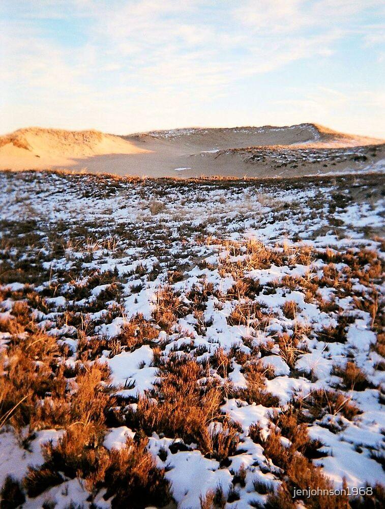 Plum Island, Dune, January 2013 by jenjohnson1968