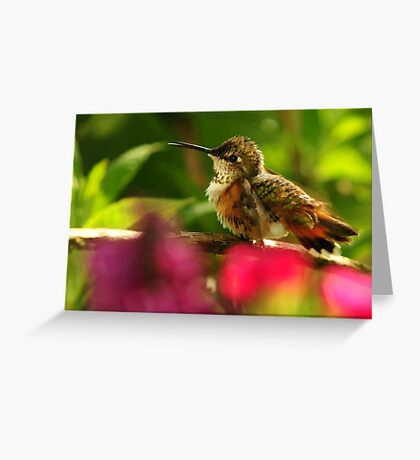 SING ME A SONG~ Greeting Card