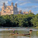 Central Park -New York  by Raoul Madden