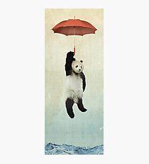 Pandachute Photographic Print