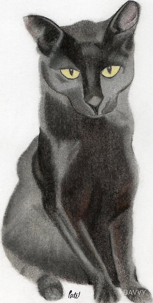 Black Cat by BAVVY