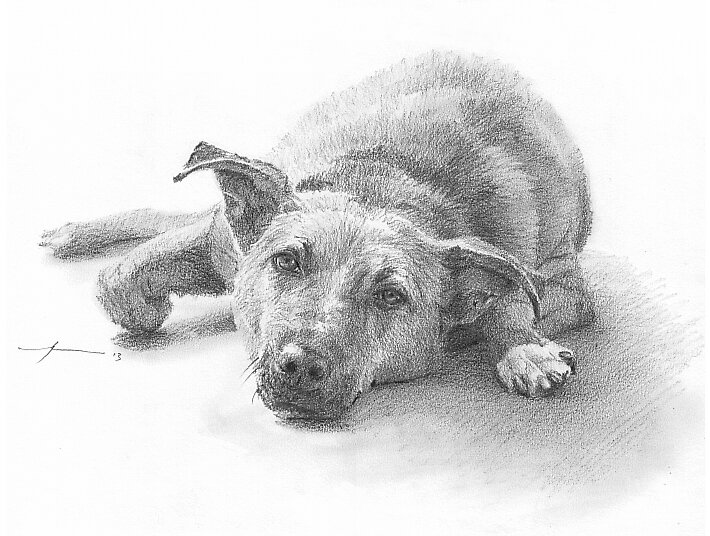 Lazing dog drawing by Mike Theuer