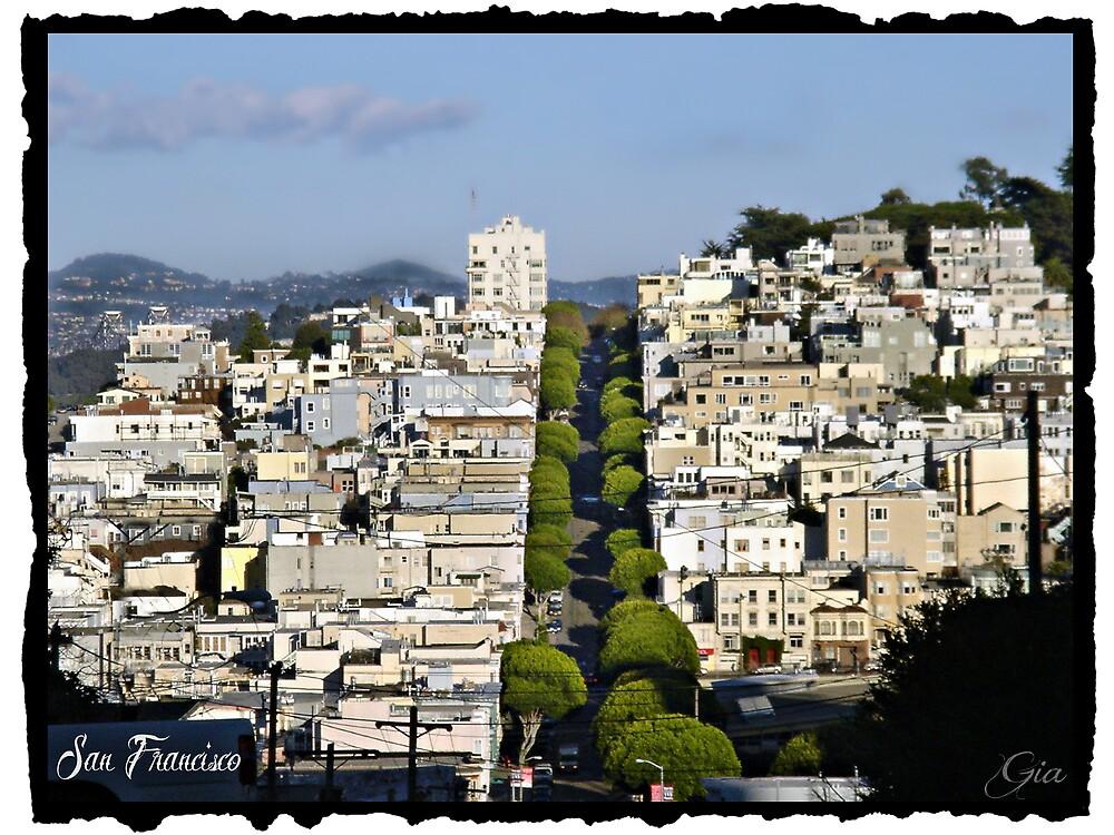 """"""" San Francisco Overlook """" by Gail Jones"""