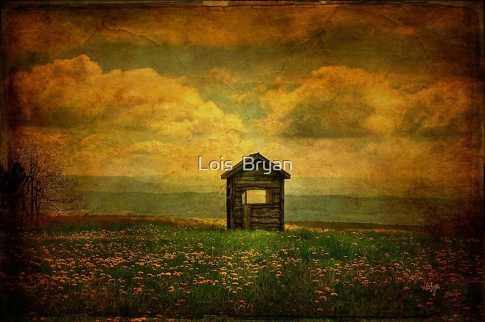 Field of Dandelions by Lois  Bryan