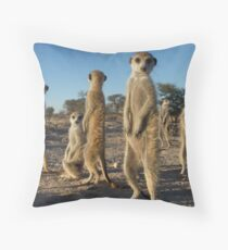 Meerkat morning Throw Pillow