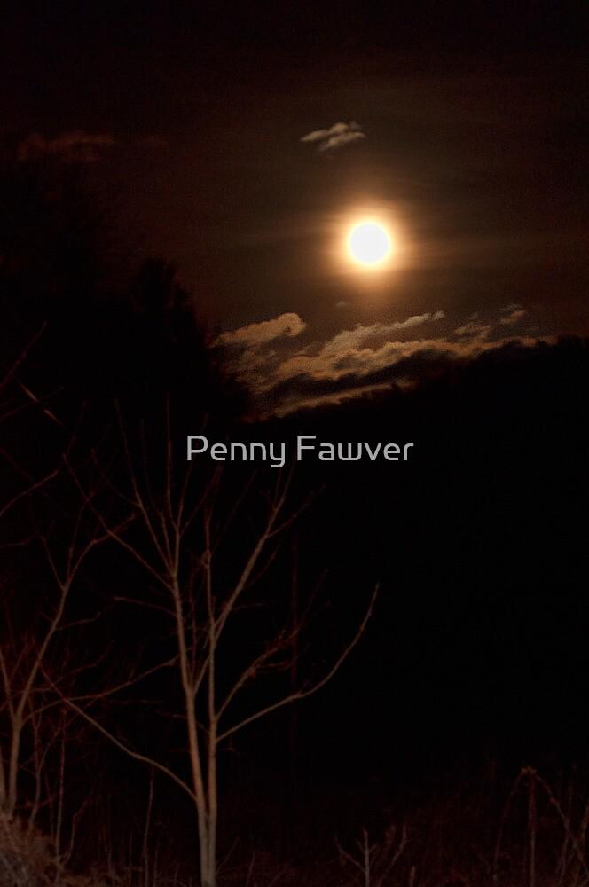 Moonlight by Penny Rinker