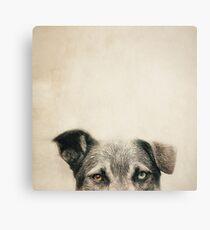 Half Dog Canvas Print