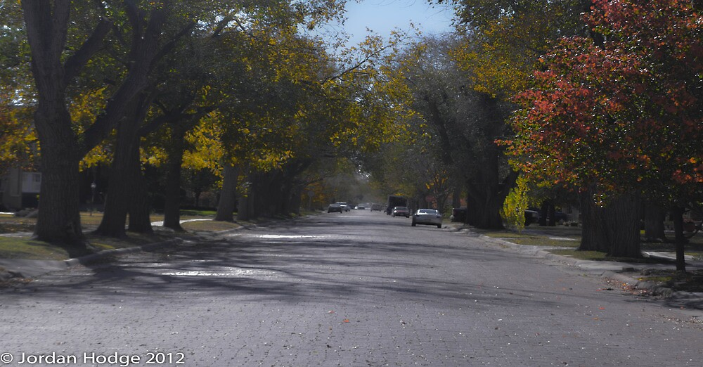 Amarillo Local Street View by jordanchodge