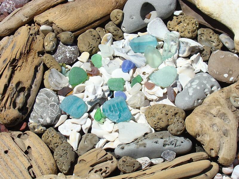 Quot Beach Seaglass Shells Art Prints Driftwood Agates Fossils