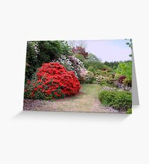 A New Zealand Garden Greeting Card