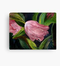 Nicola's Tulips Canvas Print