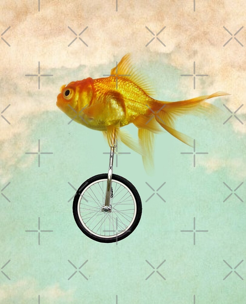 unicycle goldfish by Vin  Zzep