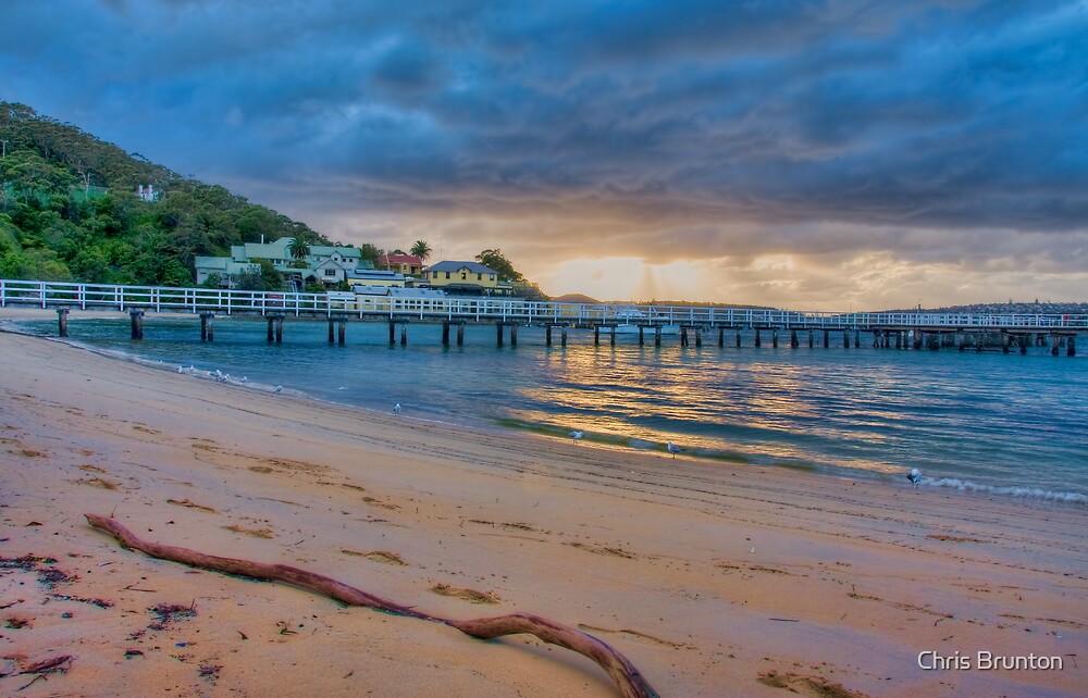 Chowder Bay Sunrise by Chris Brunton