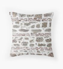 Ancient wall background Throw Pillow