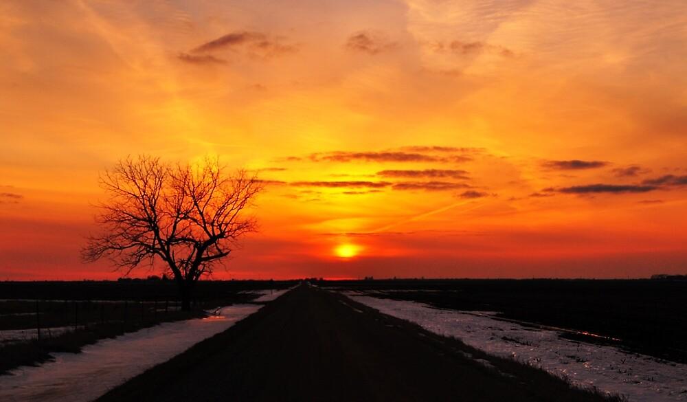 Spring Sunset by kentuckyblueman