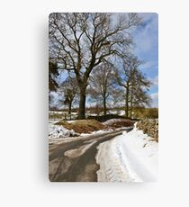 Winter still clings on Canvas Print