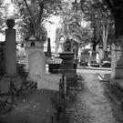 Eternal Rest by Talia Felix