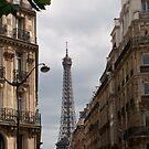 Eiffel Tower I by Talia Felix