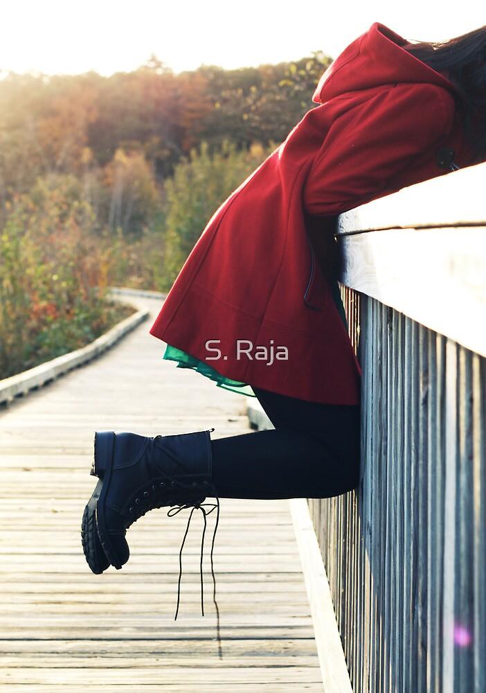 Boardwalk by S. Raja