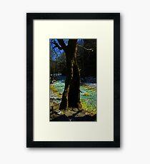 koufala Framed Print