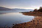 Loch Fyne by Christine Smith