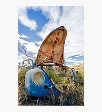 Forgotten Bug Photographic Print